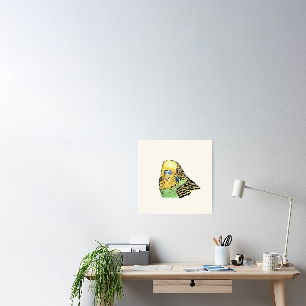 Prettyboy the Green Parakeet Poster