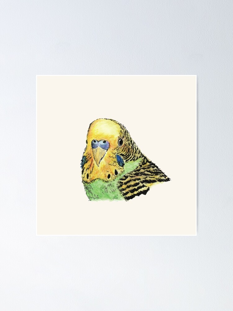 Alternate view of Prettyboy the Green Parakeet Poster
