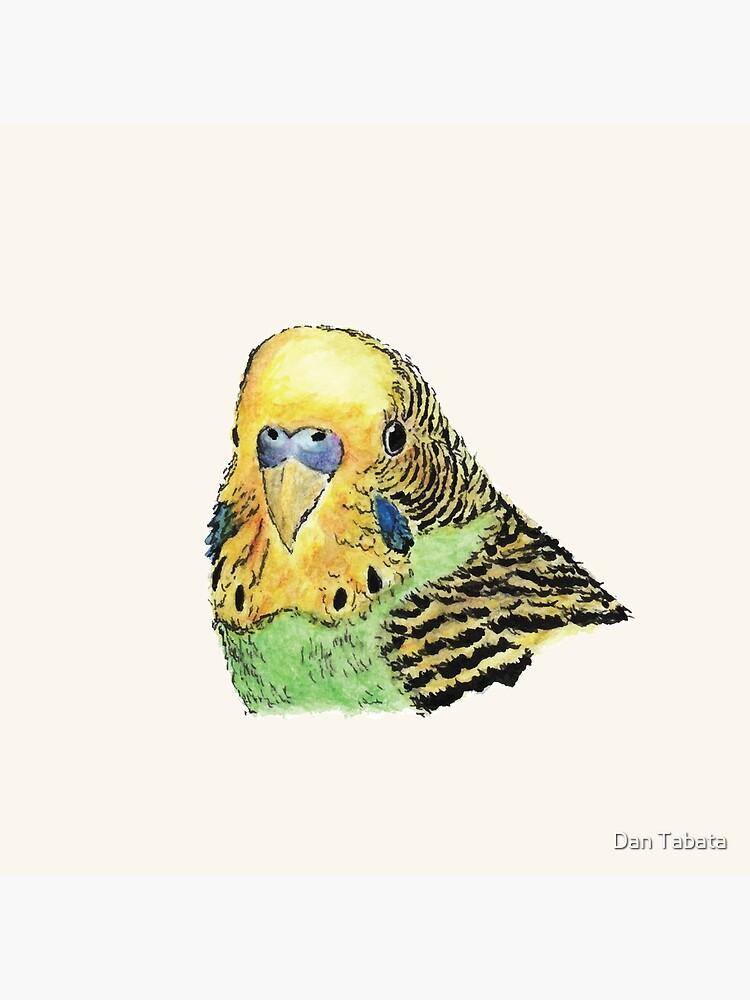 Prettyboy the Green Parakeet by dmtab