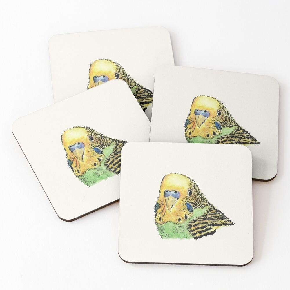 Prettyboy the Green Parakeet Coasters (Set of 4)