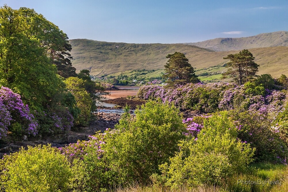 River Erriff #1 by PhotosByHealy