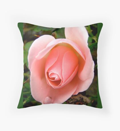 Governor General's rose - All products Throw Pillow