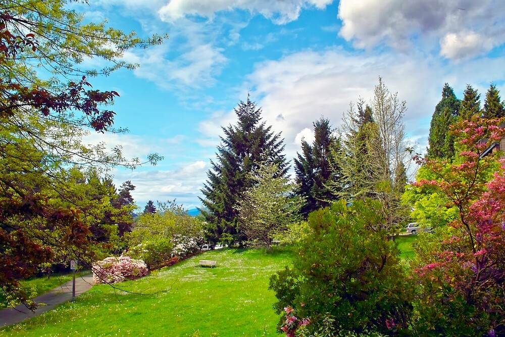 Springtime View from Home, Vancouver BC by Priscilla Turner