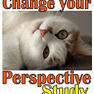 Change Your Perspective - Study by SlightlySkewy