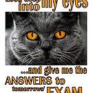 Look Deep into My Eyes by SlightlySkewy