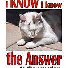 I Know I Know by SlightlySkewy