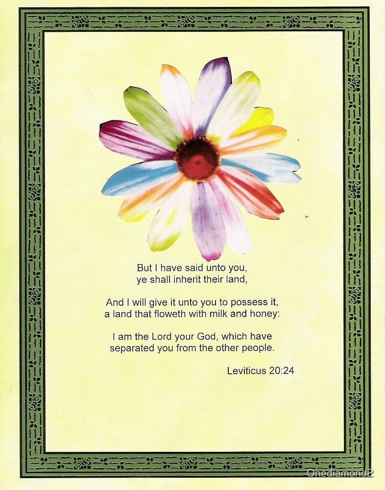 Leviticus 20:24 by Onediamond2
