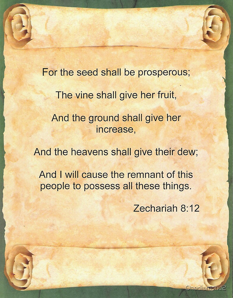 Zechariah 8:12 by Onediamond2