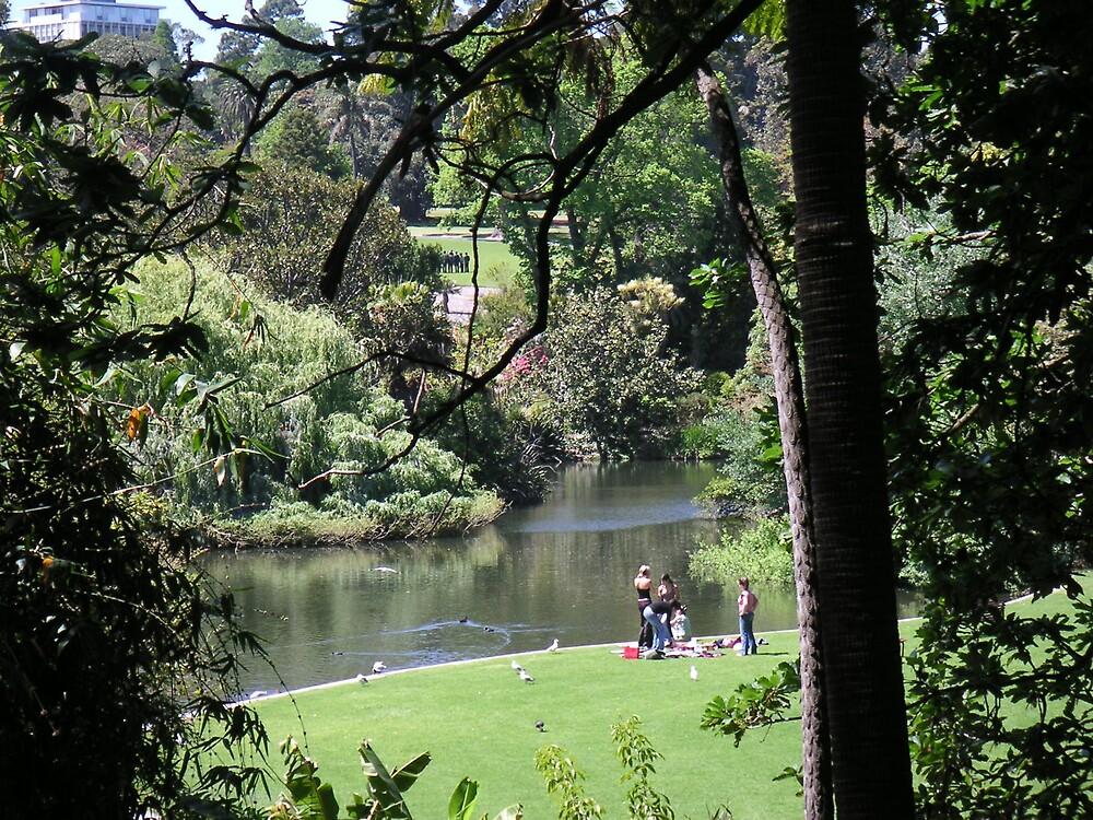 Melbourne's Botanic Gardens by Ian McKenzie