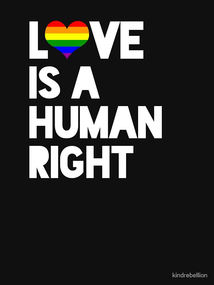 Gay Pride, LGBT Stolz, erhalten Rechte, Menschenrechte Shirt von futureculture