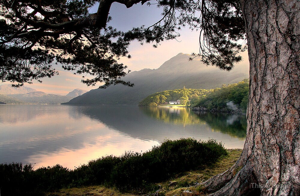 Rowardennan Youth Hostel by Thistle Images