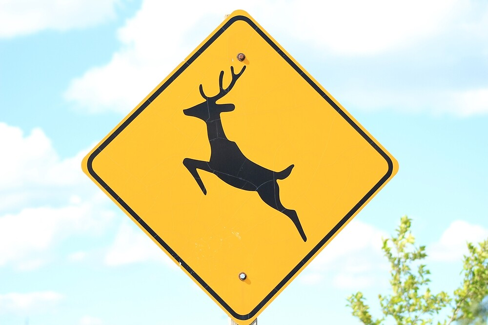 Deer Crossing Road Sign by rhamm