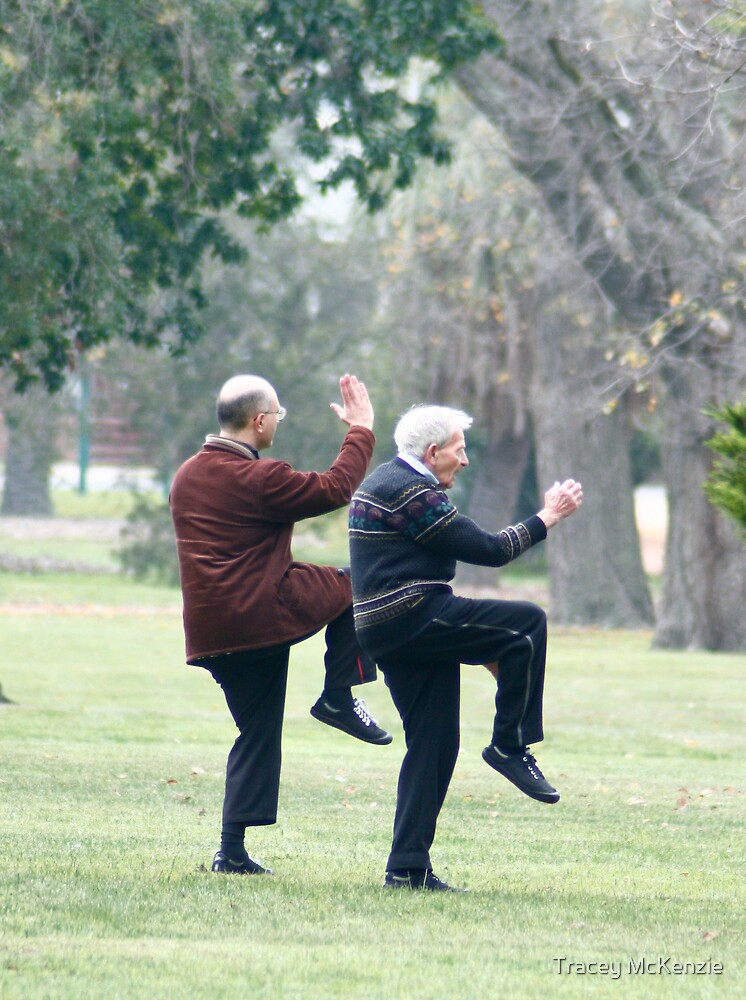 Tai Chi in the park by Tracey McKenzie
