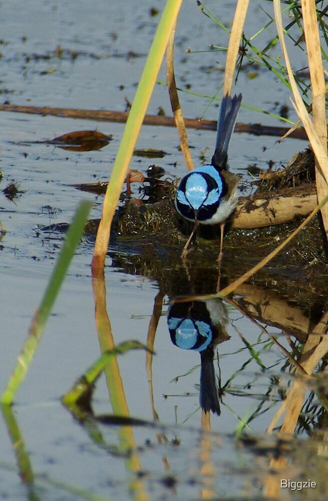 Mirror mirror in the Lake by Biggzie