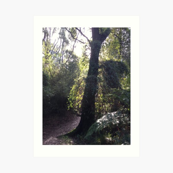 Forest Corner Art Print