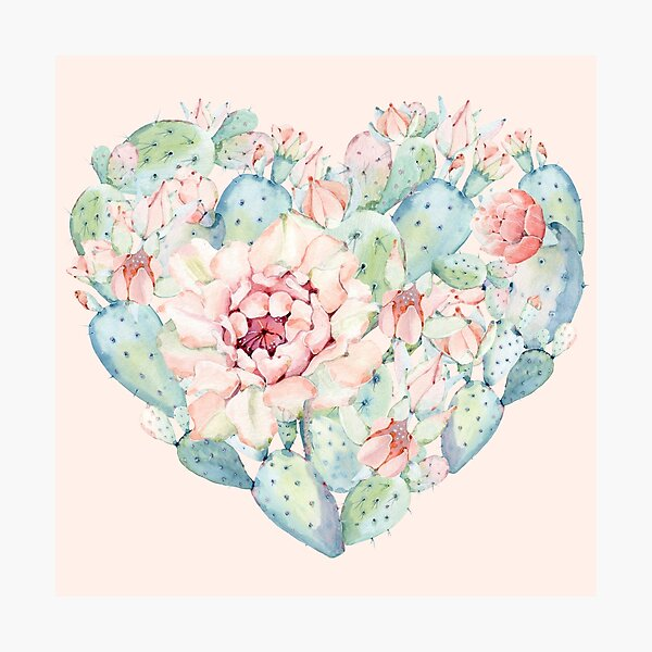 Pretty Cactus Heart Pink and Turquoise Desert Cacti Wall Art  Photographic Print