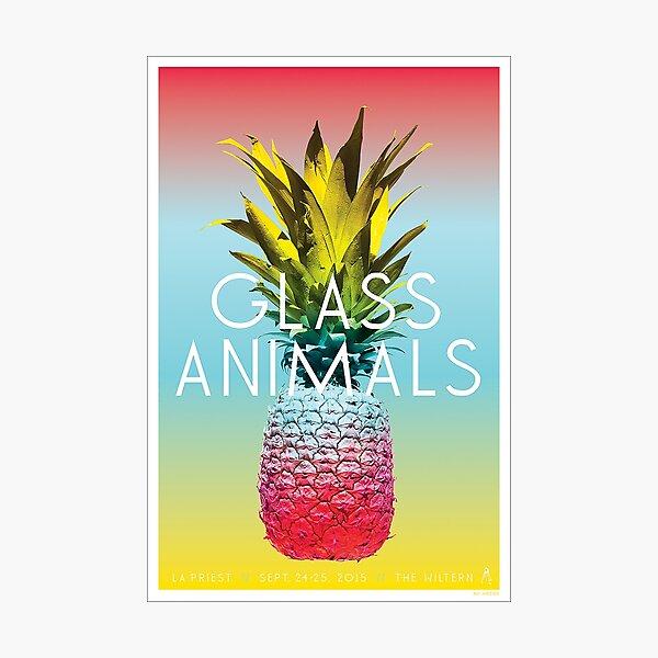 Glass Animals Tour Poster Photographic Print