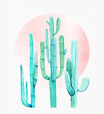 Pretty Cactus Rosegold Pink and Turquoise Desert Cacti Southwest Decor Photographic Print