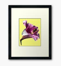 Lily (Abstract Digital Art) Framed Print