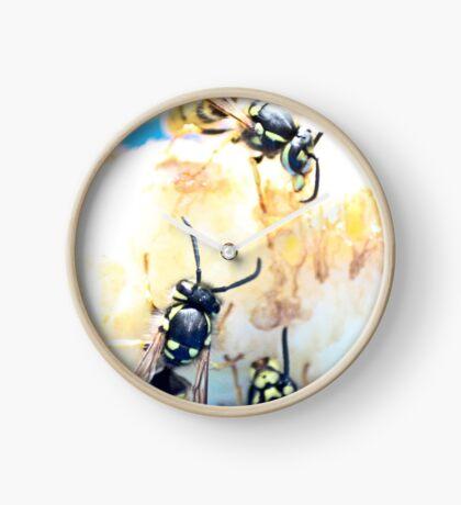Feeding wasps Clock