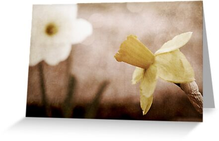 If These Flowers Could Speak by Trish Mistric