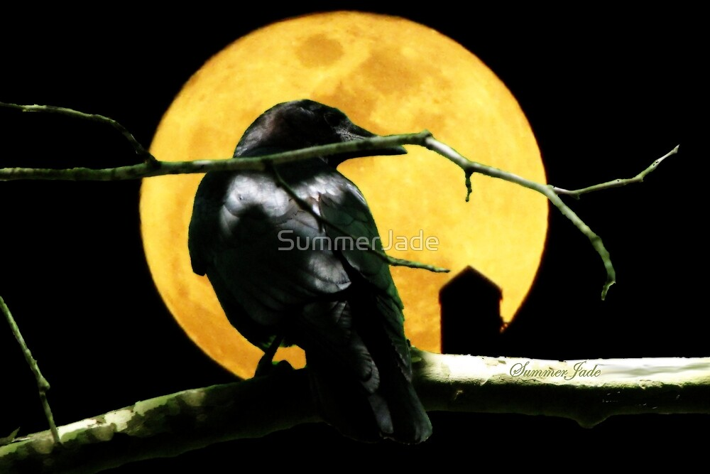 Black Crow ~ Harvest Moon by SummerJade