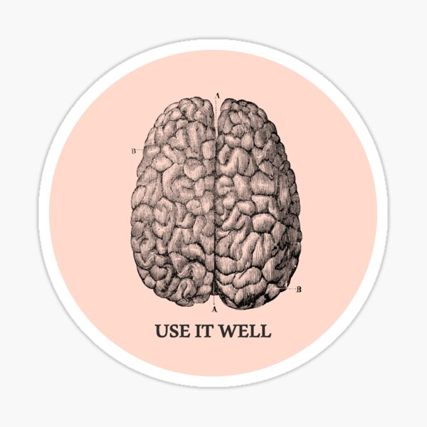 Use it well - Brain  Sticker