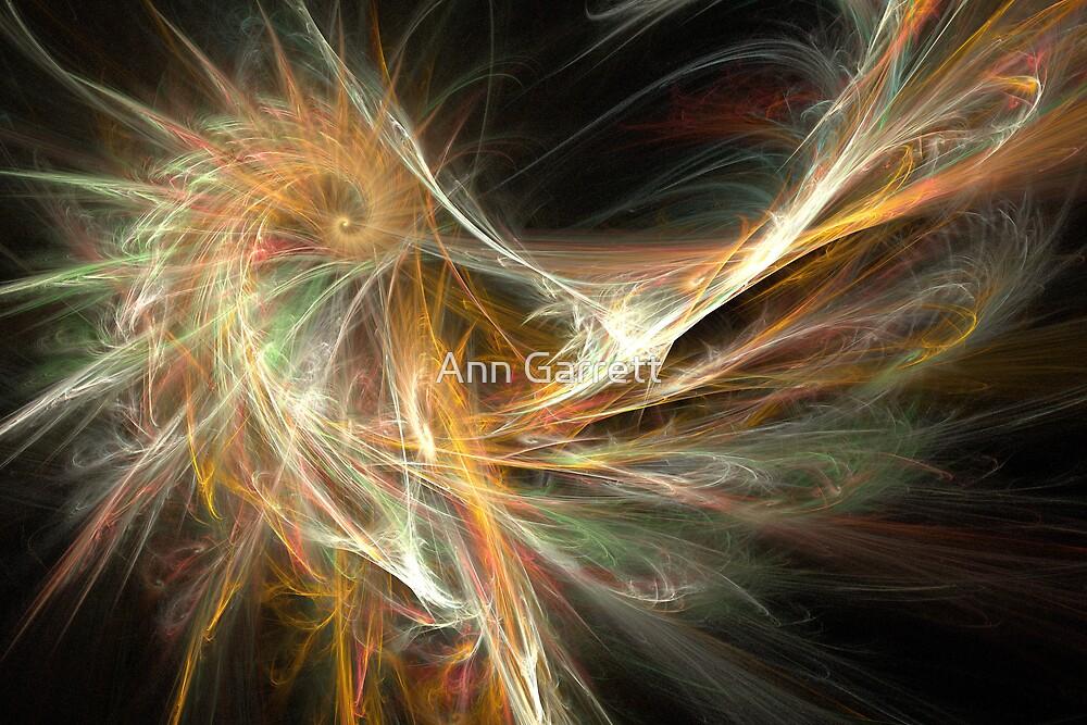 The Phoenix by Ann Garrett