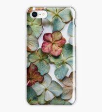 Hydrangea Petals no. 2 iPhone Case/Skin