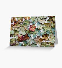 Hydrangea Petals no. 2 Greeting Card