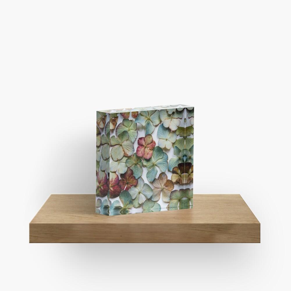Hydrangea Petals no. 2 Acrylic Block