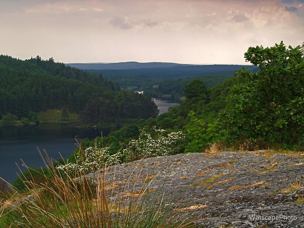 Loch Trool by WatscapePhoto