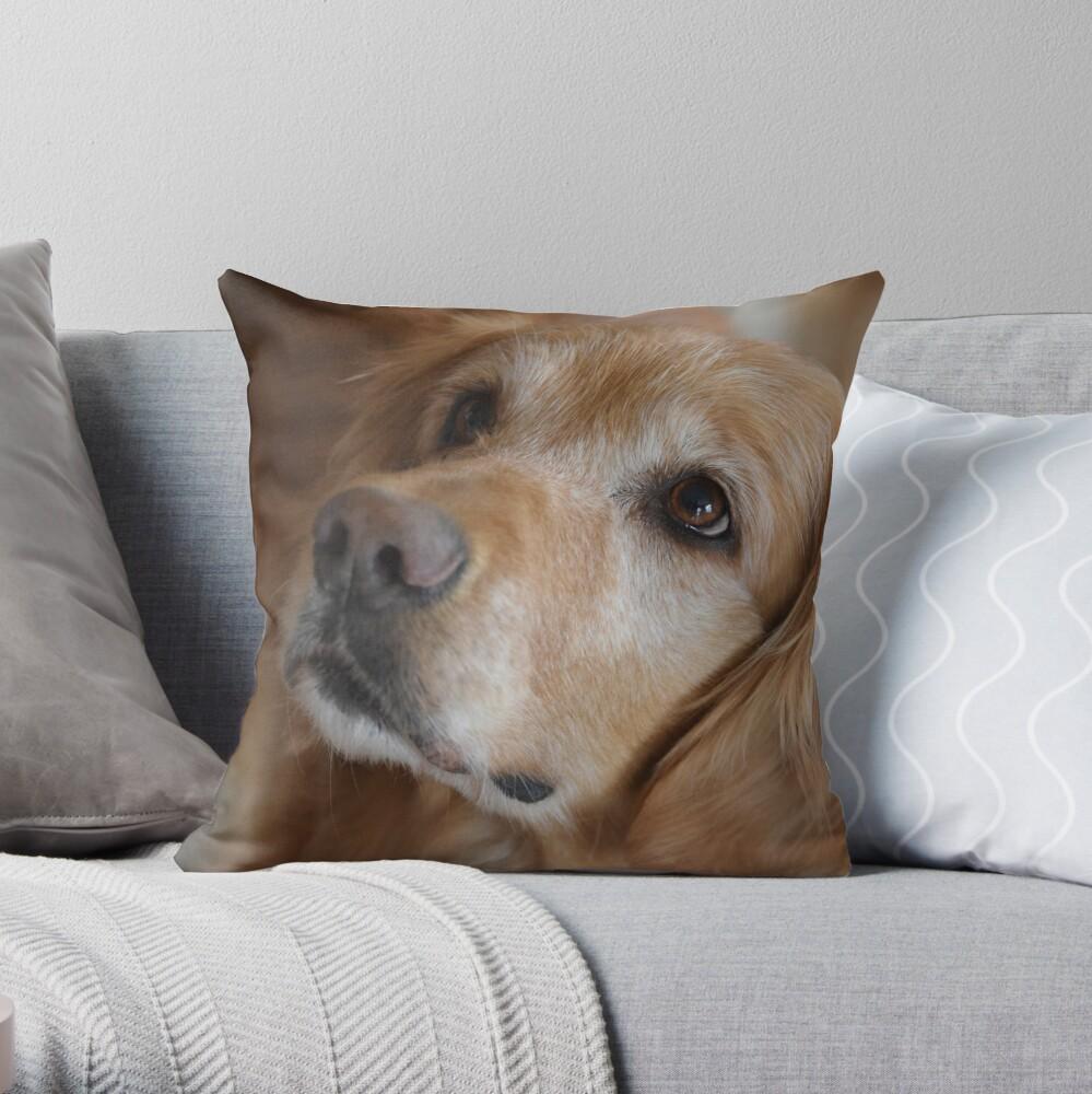Golden Retriever merchandise 9  Throw Pillow