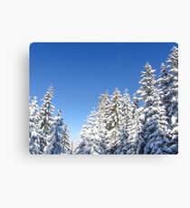 Blue Sky and Heavy Snow Canvas Print