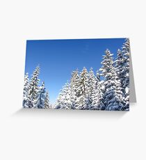 Blue Sky and Heavy Snow Greeting Card