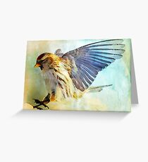 Flight I (All proceeds donated to Cancer Research) (9743 views as of 061518) Greeting Card