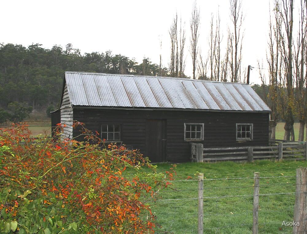 Tasmanian Homestead by Asoka