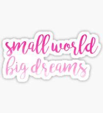Small World Big Dreams Sticker