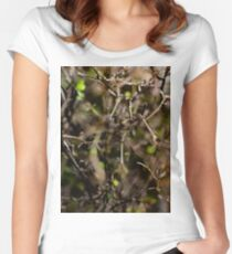 Twigs Women's Fitted Scoop T-Shirt