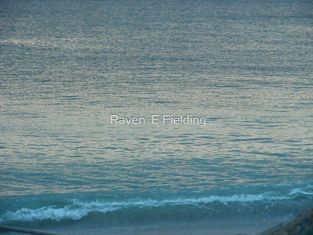 The Beach by Raven Fielding