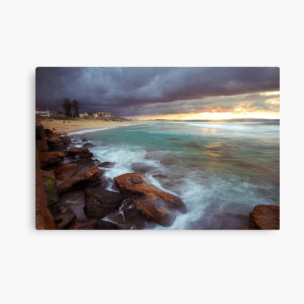 Chocolate and Cream Canvas Print