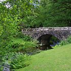 A Bridge Over The Meavy At Burrator by lezvee