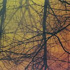 Nuclear Trees Branches by makarmusic