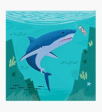 The Shark and The Seahorse Photographic Print