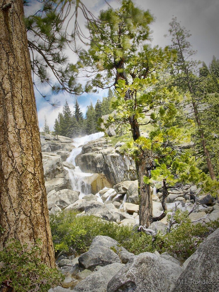 Dreaming of Bassi Falls by M L Rondez
