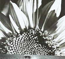 The sunflower by beatrizmeneses
