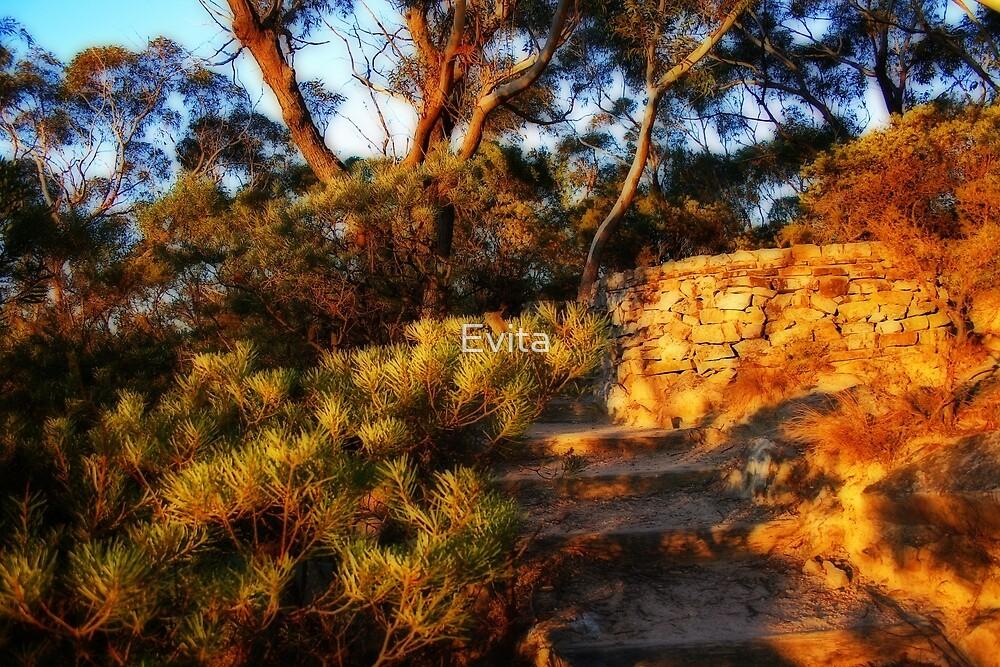 Golden Steps by Evita