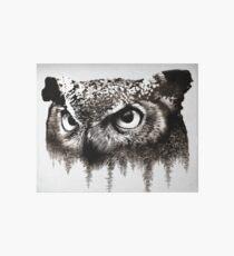 Owl Art Board