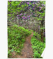 Nature's Garden Trail - North Carolina Catawba Rhododendron Poster