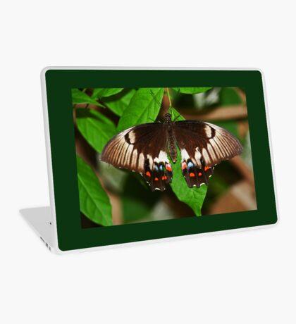 Schmetterling Laptop Folie